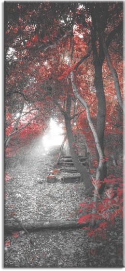 fototapeta na okna czerwony las
