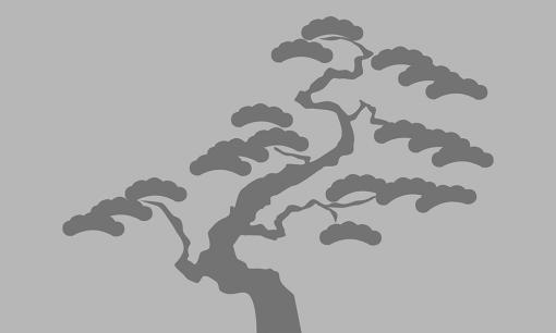 naklejka na okno z drzewem bonsai