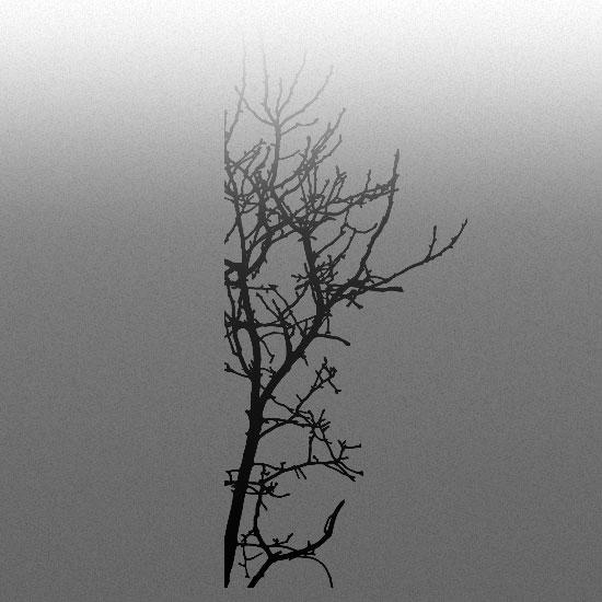 dekoracja szyb drzewo