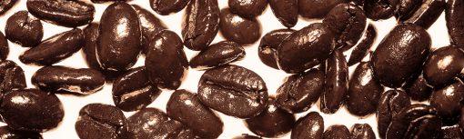 fototapeta na szklany panel ziarna kawy