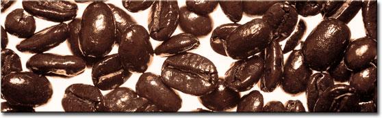 fotoszyba ziarna kawy