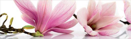 magnolie naklejka pod szybę