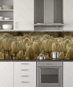 fototapety na szyby tulipany