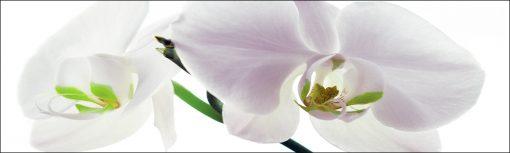 laminat na szyby białe kwiaty
