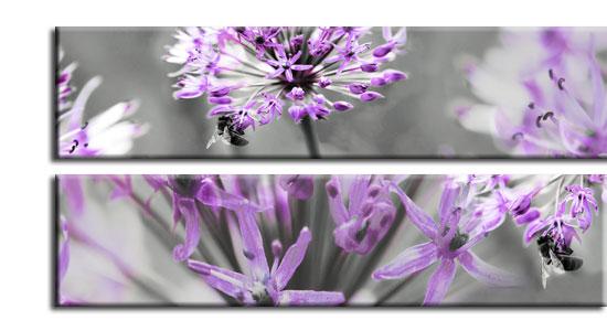 folie na szyby kwiaty
