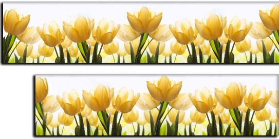 folia pod szkło tulipany