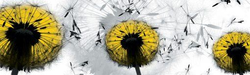 naklejka żółte dmuchawce na szybę