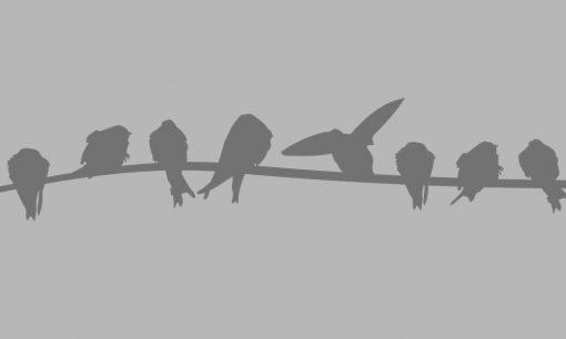 naklejka na okno ptaszki
