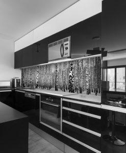 laminat na szkło brzozy