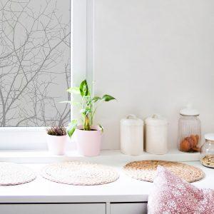 naklejka gałęzie drzewa na okno w kuchni
