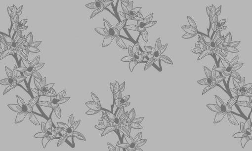 naklejka mrożona gałęzie kwiatów