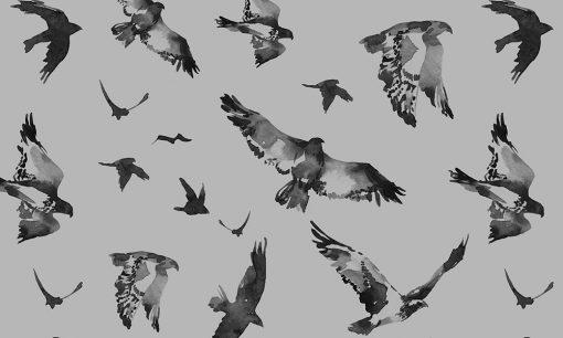 naklejka matująca szyby motyw ptaków